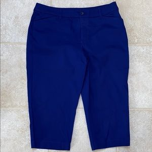 St John's Bay blue Capri size 14 NWOT